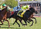 Dandino won the 2013 American St. Leger.