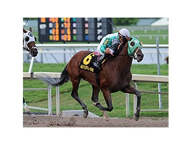"Csaba runs away from the competition in the Skip Trial Stakes.<br><a target=""blank"" href=""http://photos.bloodhorse.com/AtTheRaces-1/At-the-Races-2014/i-rMtHpBG"">Order This Photo</a>"