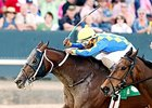 Lemon Drop Dream won the Count Fleet Sprint this spring at Oaklawn Park.