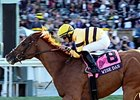 "Wise Dan <br><a target=""blank"" href=""http://photos.bloodhorse.com/BreedersCup/2013-Breeders-Cup/Mile/33150010_L6N4PX#!i=2878545101&k=VG92MXv"">Order This Photo</a>"
