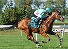 Lady Eli wins the Miss Grillo Stakes.