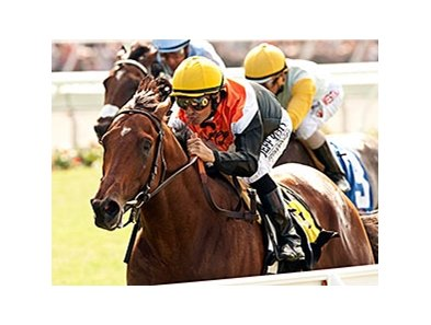 Enterprising won the 2014 La Jolla Handicap.