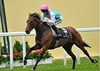 "Riposte won the Ribblesdale Stakes at Royal Ascot last June.<br><a target=""blank"" href=""http://photos.bloodhorse.com/AtTheRaces-1/at-the-races-2013/27257665_QgCqdh#!i=2586534230&k=TQNzFLw"">Order This Photo</a>"