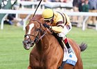 Haskin: Beware the Wise Dan Curse