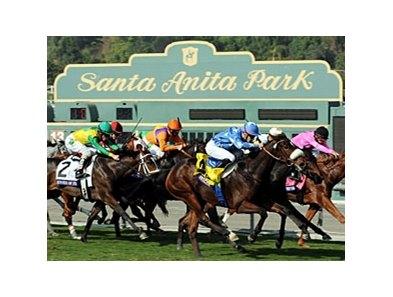 Tvg horse betting santa anita learn craps dice control betting