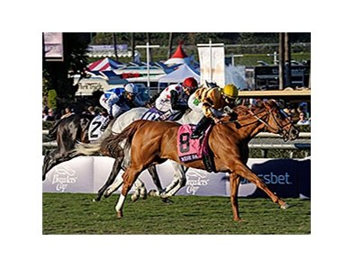 "Wise Dan <br><a target=""blank"" href=""http://photos.bloodhorse.com/BreedersCup/2013-Breeders-Cup/Mile/33150010_L6N4PX#!i=2888974700&k=JPkB87S"">Order This Photo</a>"