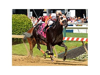 "The Jim McKay Stakes (won by Ben's Cat), was one of 6 races taken off of the turf.<br><a target=""blank"" href=""http://photos.bloodhorse.com/AtTheRaces-1/At-the-Races-2014/i-ghR62DS"">Order This Photo</a>"