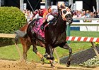 "Ben's Cat won the 2014 Jim McKay Turf Sprint. <br><a target=""blank"" href=""http://photos.bloodhorse.com/AtTheRaces-1/At-the-Races-2014/i-ghR62DS"">Order This Photo</a>"