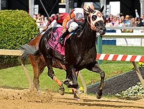 The Jim McKay Stakes (won by Ben's Cat), was one of 6 races taken off of the turf.