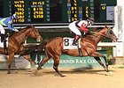 "Bradester comes home strong to win the Mineshaft Handicap.<br><a target=""blank"" href=""http://photos.bloodhorse.com/AtTheRaces-1/At-the-Races-2014/35724761_2vdnSX#!i=3088532518&k=MHvDQG6"">Order This Photo</a>"