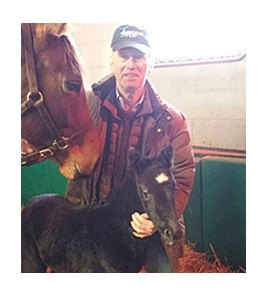 The first foal by grade I winner Creative Cause, a filly out of the Indian Charlie mare Incarnate Memories.