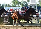 "Belmont Stakes winner Tonalist<br><a target=""blank"" href=""http://photos.bloodhorse.com/TripleCrown/2014-Triple-Crown/Belmont-Stakes-146/i-gjKqCQD"">Order This Photo</a>"