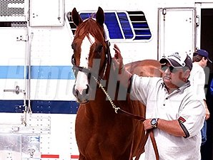 California Chrome arrives at Pimlico May 12.