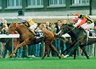 Urban Sea won the 1993 CIGA Prix de l'Arc de Triomphe.