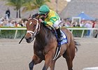 "Onlyforyou won the Forward Gal on January 25 at Gulfstream.<br><a target=""blank"" href=""http://photos.bloodhorse.com/AtTheRaces-1/At-the-Races-2014/35724761_2vdnSX#!i=3041588881&k=FDBJ3gQ"">Order This Photo</a>"