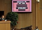 Hip 1482 by Smart Strike sold for $700,000 at the Keeneland September yearling sale.