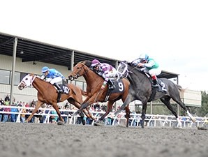 Here's Johnny (center) takes the colt and gelding division of the OBS Champions Stakes.