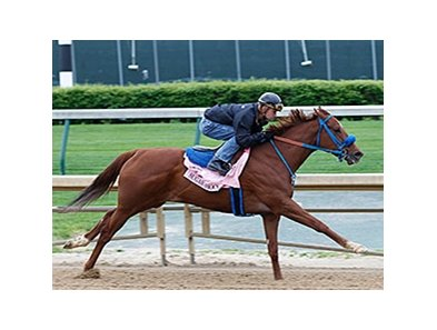 Sugar Shock worked four furlongs with Calvin Borel aboard in :48 2/5.