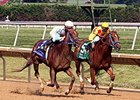 "Galiana won the Sweet & Sassy Stakes by 1 3/4 lengths on July 12. <br><a target=""blank"" href=""http://photos.bloodhorse.com/AtTheRaces-1/At-the-Races-2014/i-nL7zcPc"">Order This Photo</a>"