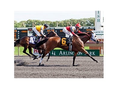 Cozze Up Lady won the 2013 Chicago Handicap.