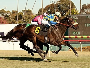 Lucayan takes on four in the San Luis Rey Stakes.
