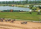 Fort Erie Racing.