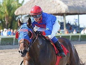 Social Inclusion Breezes for Haskell