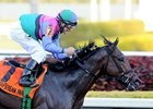 "Itsmyluckyday makes his second start of 2014 in the Best of the Rest Stakes.<br><a target=""blank"" href=""http://photos.bloodhorse.com/AtTheRaces-1/at-the-races-2013/27257665_QgCqdh#!i=2337245250&k=LTKGMKL"">Order This Photo</a>"