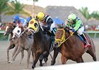 "Wildcat Red (right) finished 2nd by a head in the Gulfstream Park Derby.<br><a target=""blank"" href=""http://photos.bloodhorse.com/AtTheRaces-1/At-the-Races-2014/35724761_2vdnSX#!i=3000112535&k=t2rB5KC"">Order This Photo</a>"