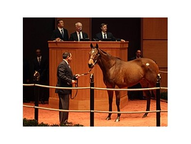 Devious Intent, Hip 138, was today's sale topper.
