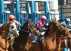 New York Racing