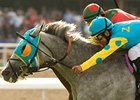 Zayat: Insurance Check Went to Stable