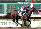 "Haskell winner Bayern drew post 2 for the Travers.<br><a target=""blank"" href=""http://photos.bloodhorse.com/AtTheRaces-1/At-the-Races-2014/i-t4LpzQs"">Order This Photo</a>"