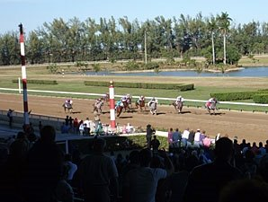 Hialeah Sees New Thoroughbred Opportunity