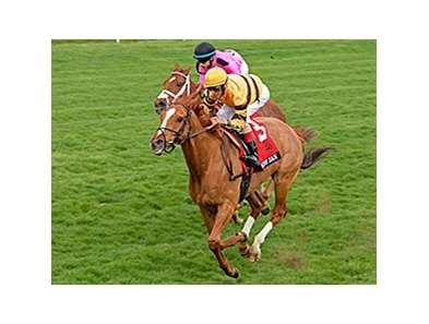 "Wise Dan and John Velazquez take the 2014 Maker's 46 Mile at Keeneland.<br><a target=""blank"" href=""http://photos.bloodhorse.com/AtTheRaces-1/At-the-Races-2014/35724761_2vdnSX#!i=3173907367&k=KhNDmm6"">Order This Photo</a>"