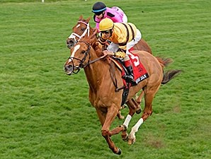 Wise Dan and John Velazquez take the 2014 Maker's 46 Mile at Keeneland.