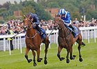 "Tapestry runs away from Taghrooda to win the Yorkshire Oaks.<br><a target=""blank"" href=""http://photos.bloodhorse.com/AtTheRaces-1/At-the-Races-2014/i-3rsrrJ3"">Order This Photo</a>"