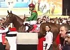 Dubai World Cup - Animal Kingdom