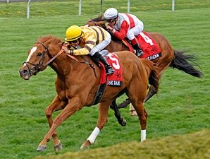 Wise Dan Stays Sharp with Bullet at Keeneland