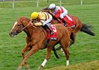 "Wise Dan will be going after his 14th consecutive victory on grass in the Shadwell Turf Mile.<br><a target=""blank"" href=""http://photos.bloodhorse.com/AtTheRaces-1/at-the-races-2013/27257665_QgCqdh#!i=2453943509&k=Fhrgx3t"">Order This Photo</a>"