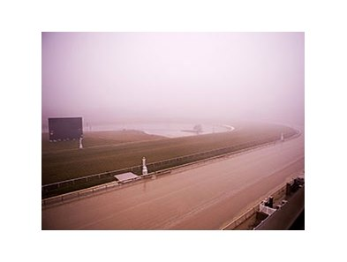 Laurel Park on January 11
