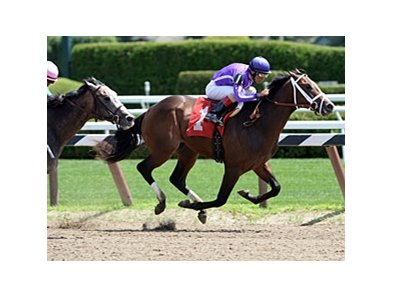 "Corfu<br><a target=""blank"" href=""http://photos.bloodhorse.com/AtTheRaces-1/at-the-races-2013/27257665_QgCqdh#!i=2657031645&k=pgPnPhS"">Order This Photo</a>"