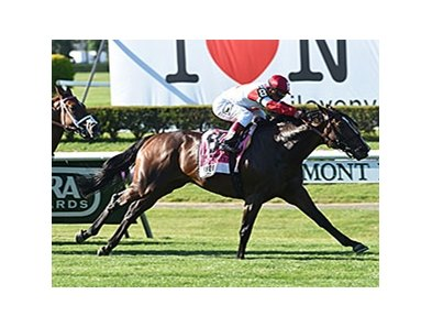 "Real Solution rolls home to win the Knob Creek Manhattan Stakes. <br><a target=""blank"" href=""http://photos.bloodhorse.com/AtTheRaces-1/At-the-Races-2014/i-QTJn9W6"">Order This Photo</a>"