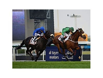 "Certerach holds off Cavalryman to win the Dubai Gold Cup.<br><a target=""blank"" href=""http://photos.bloodhorse.com/AtTheRaces-1/Dubai-2014/38085033_tQgx4h#!i=3148562215&k=7xZ8v23"">Order This Photo</a>"