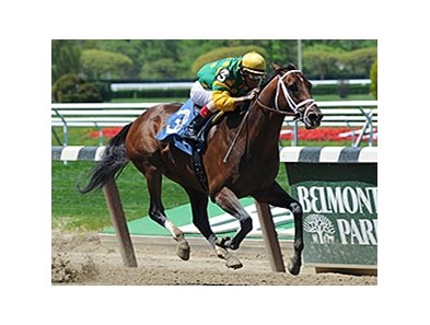 "Palace Malice is scheduled to make his first start since May in the Alydar Stakes.<br><a target=""blank"" href=""http://photos.bloodhorse.com/AtTheRaces-1/At-the-Races-2014/i-QP8dWPW"">Order This Photo</a>"
