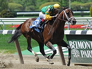 2013 Belmont Stakes winner Palace Malice is expected to run in the Met Mile.