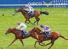 Australia Heads 16 Entered for Epsom Derby