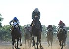 "Zivo leads them home in the Suburban.<br><a target=""blank"" href=""http://photos.bloodhorse.com/AtTheRaces-1/At-the-Races-2014/i-qKqNPzg"">Order This Photo</a>"