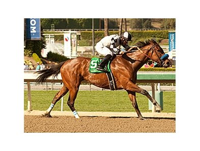 Let Faith Arise rolls to victory in the Santa Margarita Stakes.