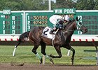 2013 New Jersey bred horse of the year Geeky Gorgeous will run in the Eleven North Handicap.
